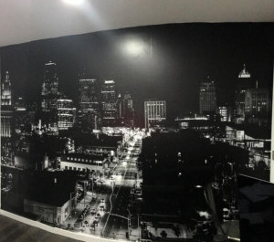 Frosted Film + Wall Wraps